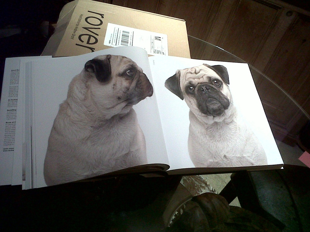 pug dog printed in a book