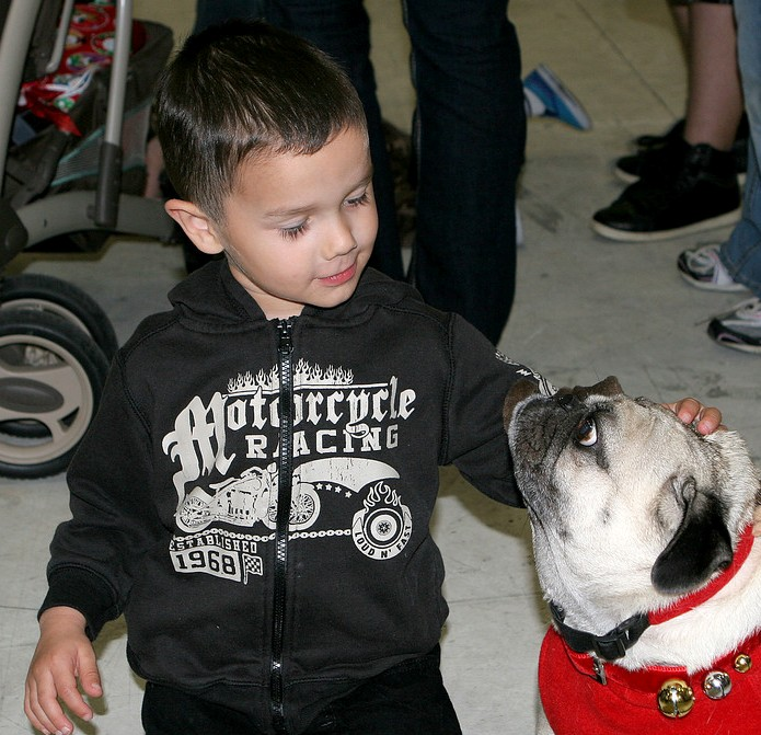 a boy patting the dog
